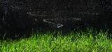 Полив газонов